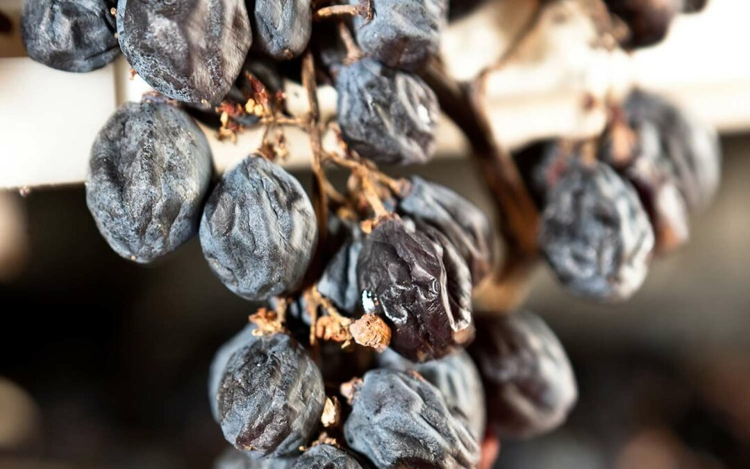 Vin på torkad druva med mer smak